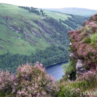 Ireland / Irlandia: Wicklow Mountains National Park